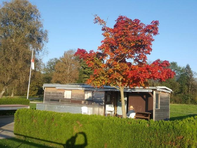 Read more about the article Tom's Herbstbilder